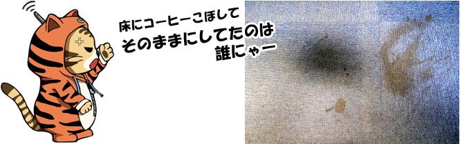 コーヒーがこぼれた汚れたタイルカーペットを見て「床にコーヒーこぼしてそのままにしてのは誰ニャー」と怒っているにゃんトラン